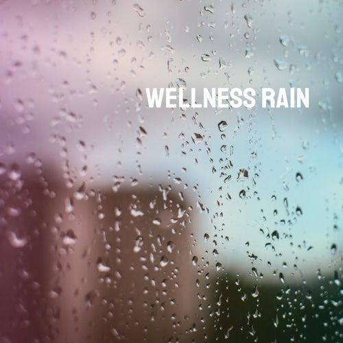 Wellness Rain von Various Artists