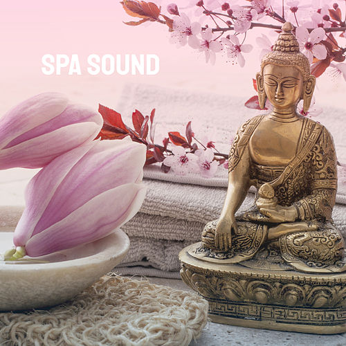 Spa Sound by Various Artists