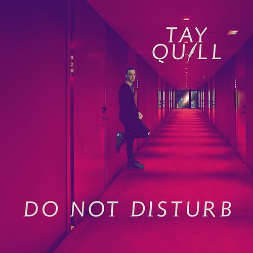 Do Not Disturb by Tay Quill