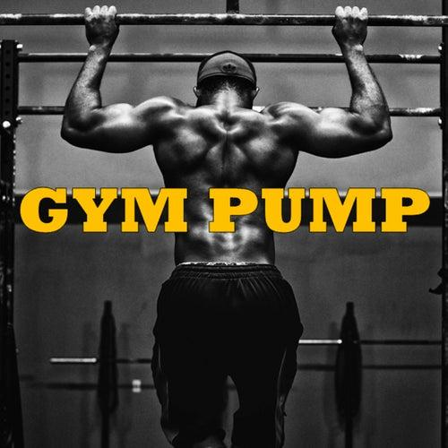 Gym Pump de Various Artists