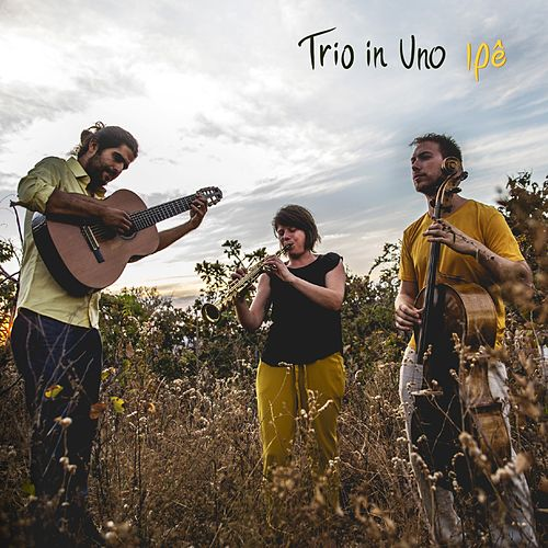 Ipê by Trio in Uno