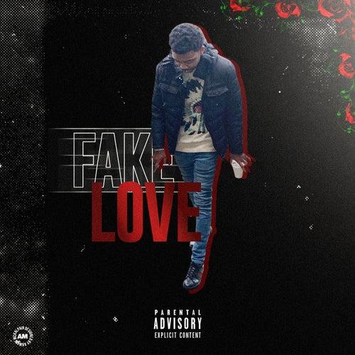 Fake Love by Jaymo