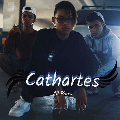 Cathartes de The Pines