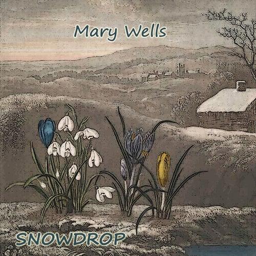 Snowdrop von Mary Wells