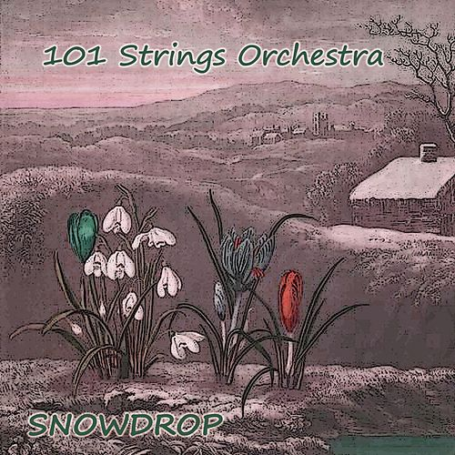 Snowdrop by 101 Strings Orchestra