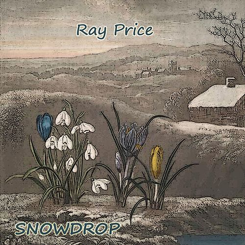Snowdrop by Ray Price