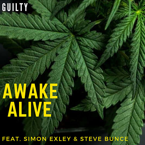 Guilty by Awake