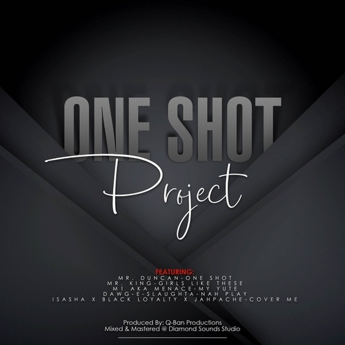 One Shot Project de Various Artists