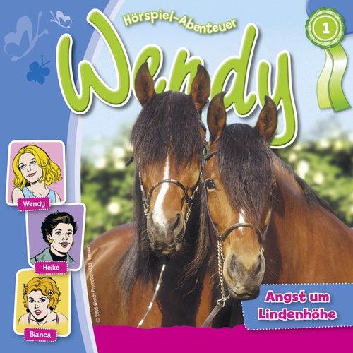 Folge 1: Angst um Lindenhöhe von Wendy