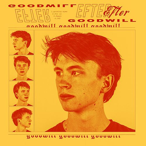 Goodwill by Efter