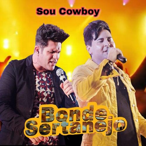 Sou Cowboy de Bonde Sertanejo
