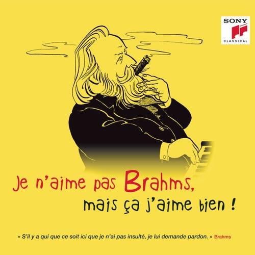 Je n'aime pas Brahms, mais ça j'aime bien ! von Various Artists
