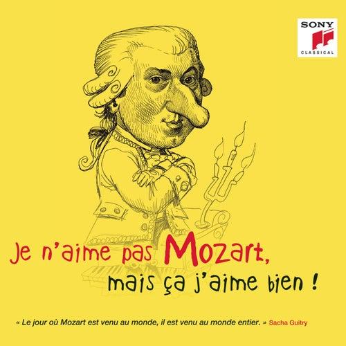 Je n'aime pas Mozart, mais ça j'aime bien ! von Various Artists