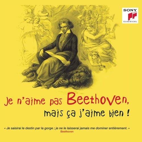 Je n'aime pas Beethoven, mais ça j'aime bien ! de Various Artists
