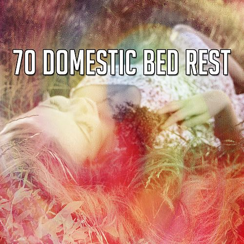 70 Domestic Bed Rest by Serenity Spa: Music Relaxation