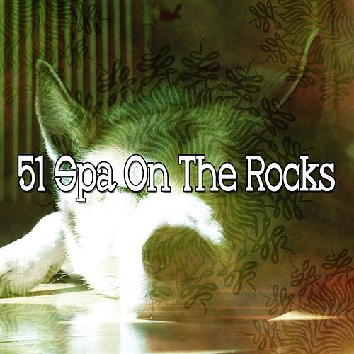 51 Spa on the Rocks de Best Relaxing SPA Music
