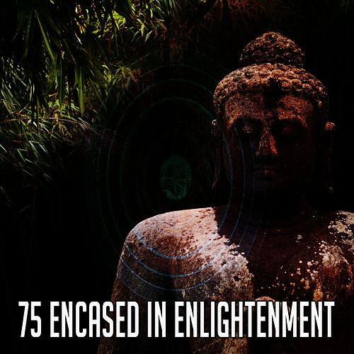 75 Encased in Enlightenment by Yoga Music