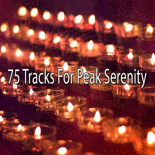 75 Tracks for Peak Serenity by White Noise Research (1)