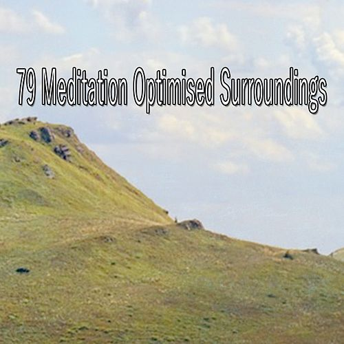 79 Meditation Optimised Surroundings von Entspannungsmusik
