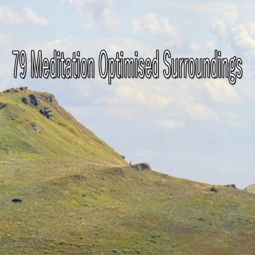 79 Meditation Optimised Surroundings von Entspannungsmusik