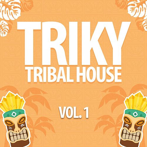Triky Tribal House, Vol. 1 de Various Artists