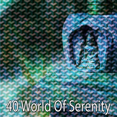 40 World of Serenity by Deep Sleep Meditation