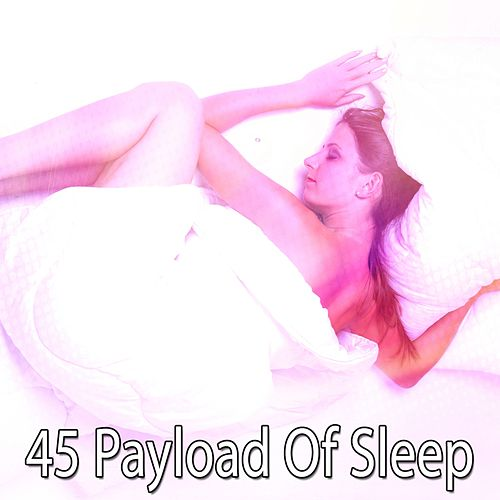 45 Payload of Sleep by Baby Sleep Sleep