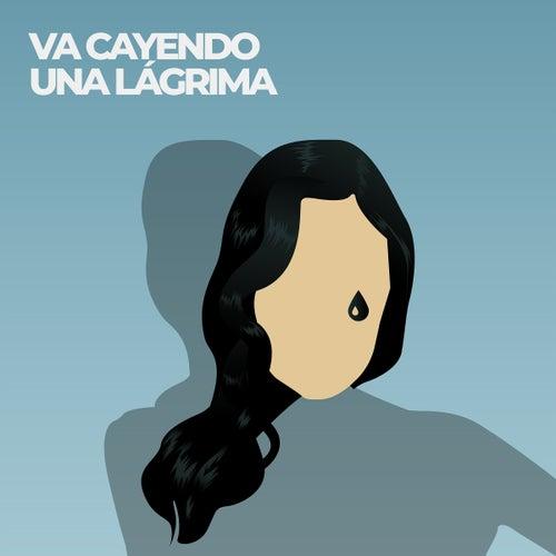 Va Cayendo una Lágrima (Los Iracundos Cover) von Flora Martinez