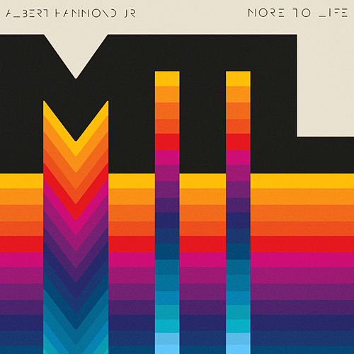 More to Life by Albert Hammond Jr.