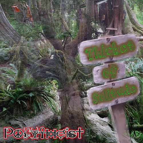 Thicket of Solitude by Polytheist