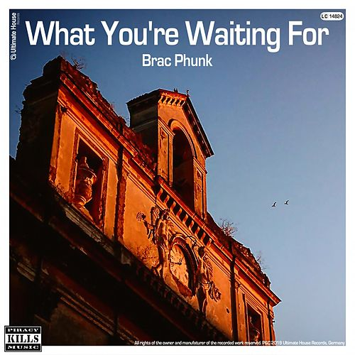 What You're Waiting For de Brac Phunk