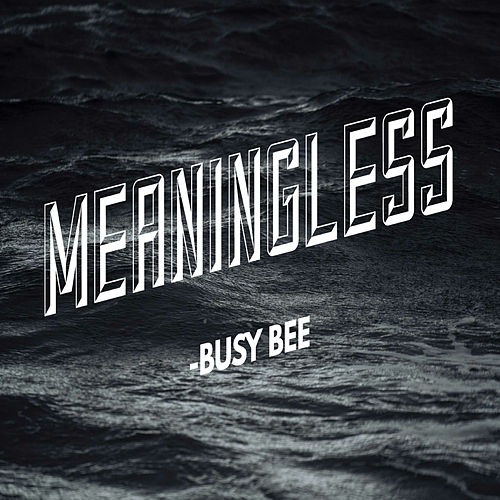 Meaningless de Busy Bee
