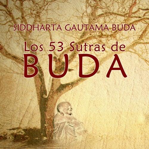 Los 53 Sutras de Buda de Artur Mas