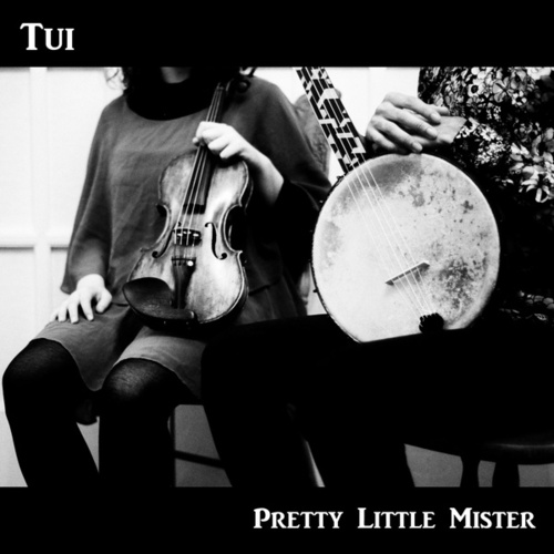 Pretty Little Mister by Tui