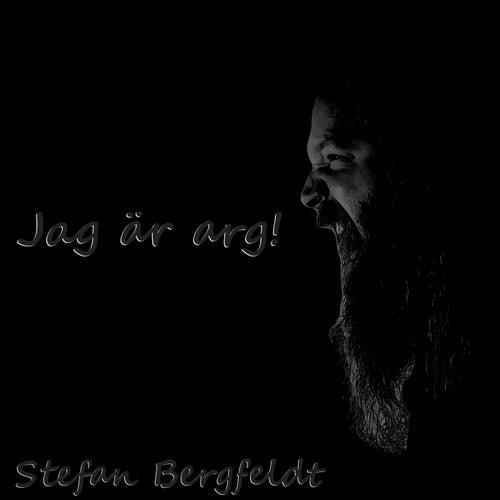 Jag är arg! by Stefan Bergfeldt