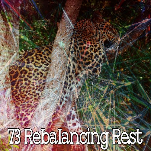 73 Rebalancing Rest by S.P.A
