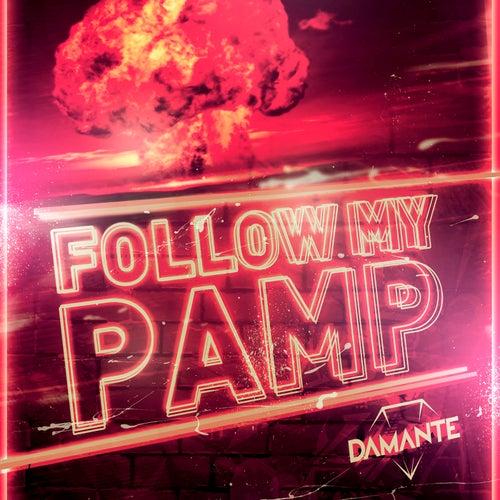 Follow My Pamp de Andrea Damante