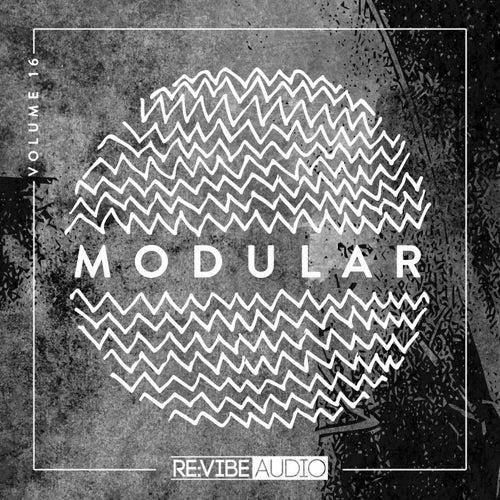 Modular, Vol. 16 de Various Artists