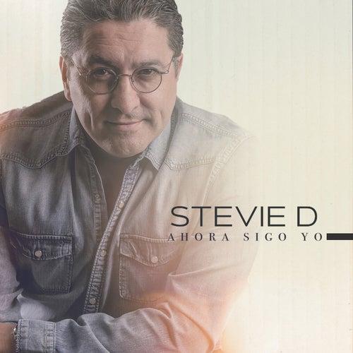 Ahora Sigo Yo by Stevie D