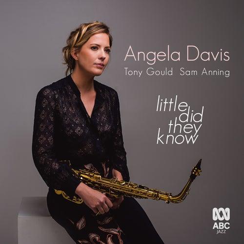 Little Did They Know von Angela Davis