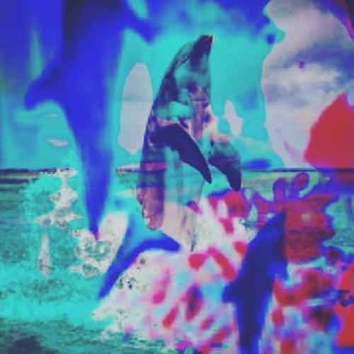 Walking Like a Dolphin de Jei Sonic