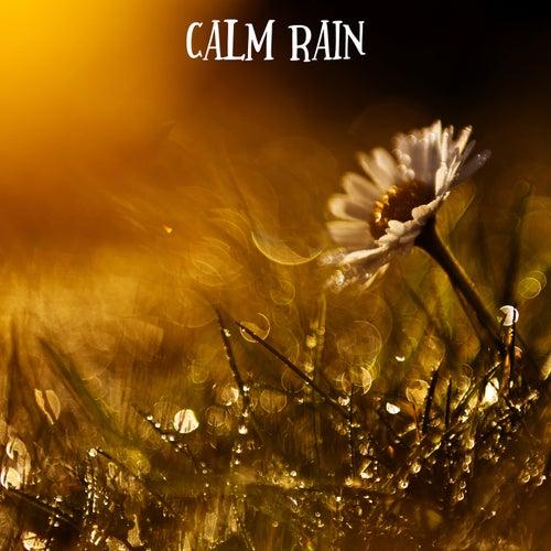 Calm Rain by Rain for Deep Sleep (1)