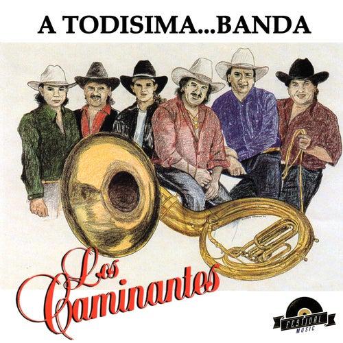 A Todisima Banda by Los Caminantes