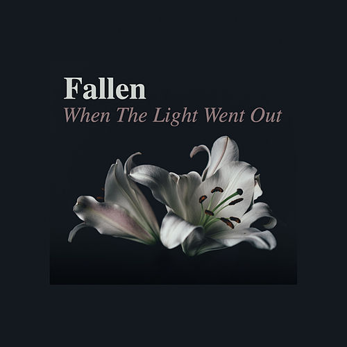 When The Light Went Out von Fallen