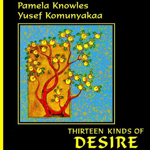 Thirteen Kinds of Desire by Pamela Knowles