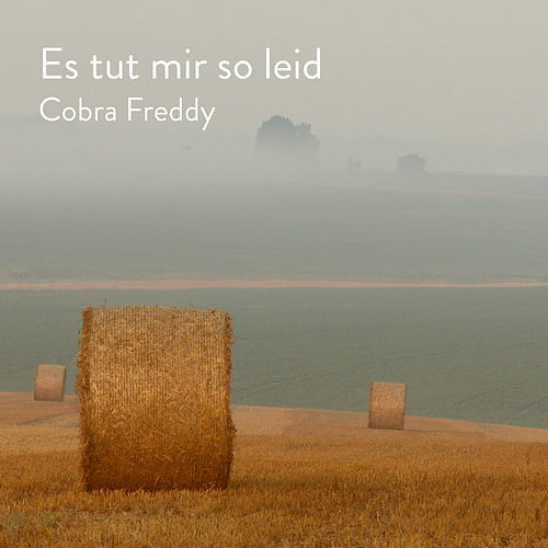 Es tut mir so leid by Cobra Freddy