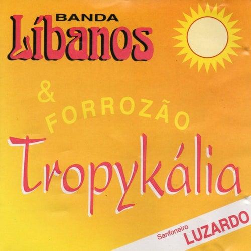 Banda Líbanos & Forrozão Tropykália de Banda Líbanos