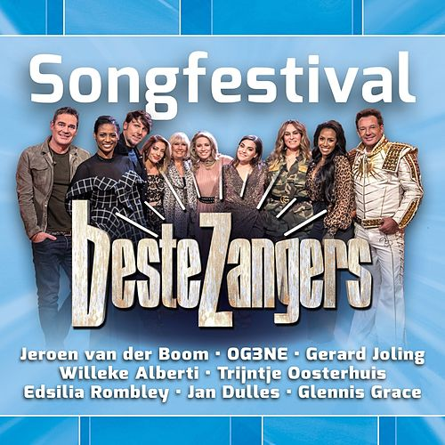 Beste Zangers Songfestival by Various Artists