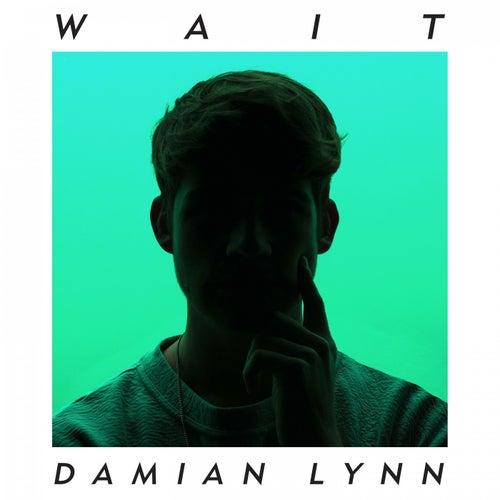 Wait by Damian Lynn