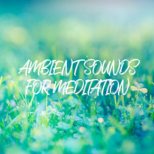 Ambient Sounds for Meditation von Yoga Music